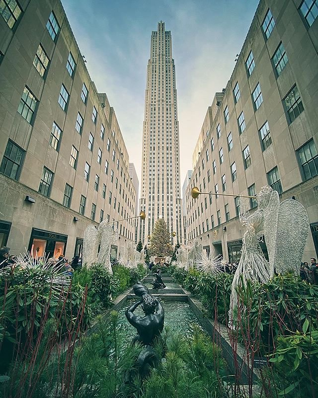 2019 Christmas Tree at Rockefeller Center!